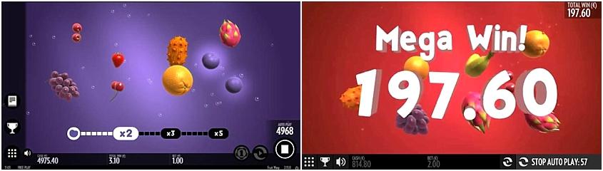 Win Fruit Warp 21766