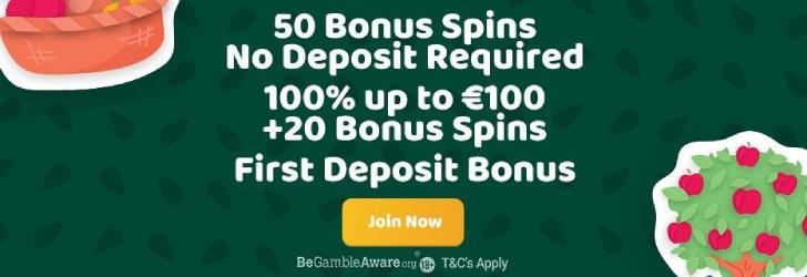 Betalningsmetoder på online casino 25621