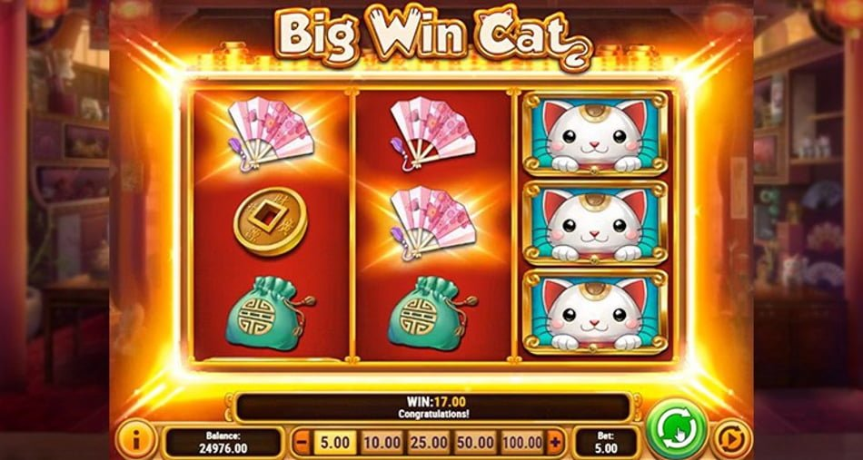 Big Win Cat 45464